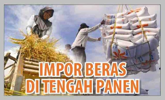 DPR : Aneh Banget, Kemendag Mengimpor Beras saat Kondisi Surplus