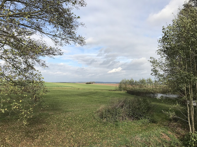 Franken, Karpfenweiher, Landschaft