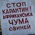 В окремих регіонах України спалахнула чума свиней