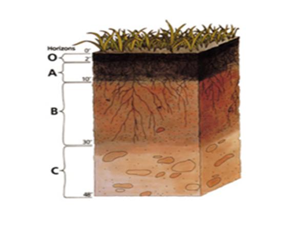 gambar komposisi tanah