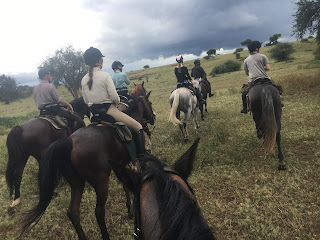 Botswana, Riitta reissaa, ratsastussafari, ratsastusmatkailu, Horsexplore