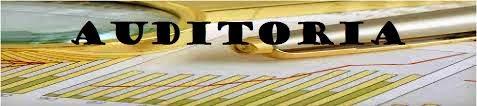Sociedades-Obligadas-a-Auditar