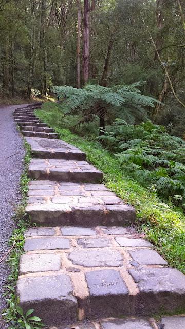 1000 Steps Kokoda Track