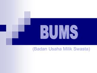 Kelebihan dan Kekurangan BUMS