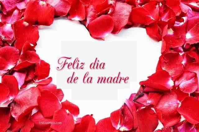 flores feliz dia de la madre