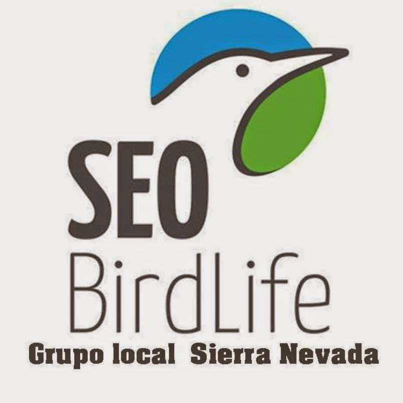Grupo Local SEO Sierra Nevada