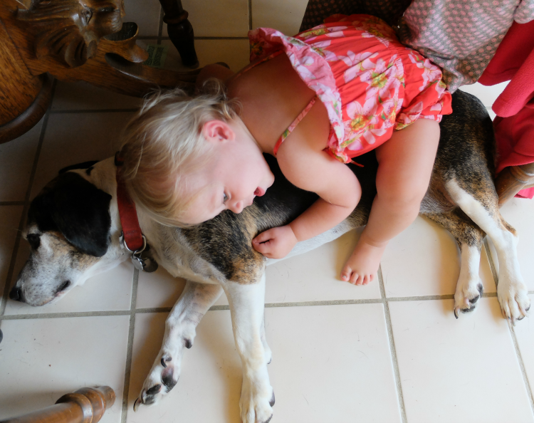 Toddler and Dog love