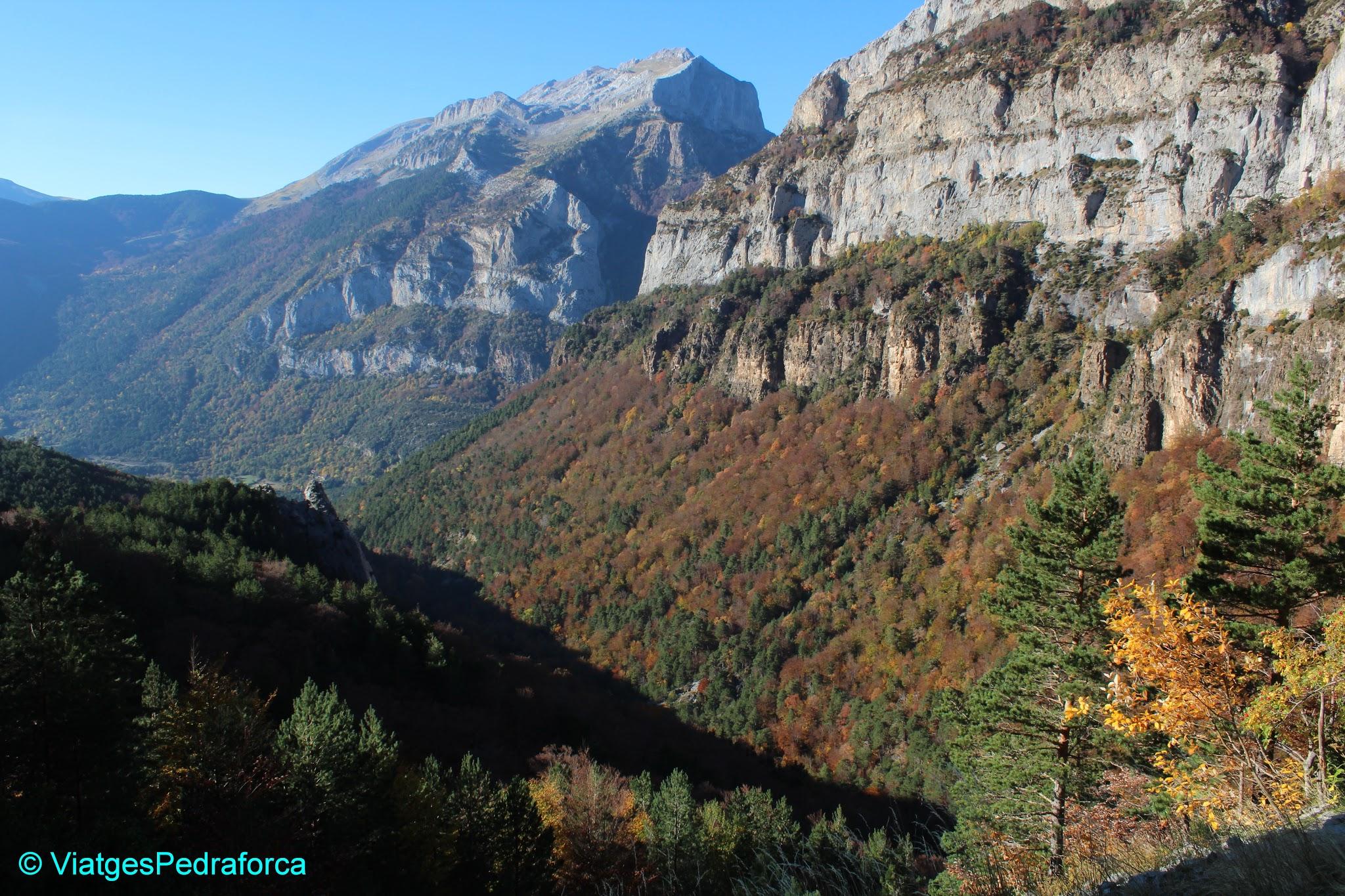 Pirineu Aragonès, Valle de Hecho, Val d'Echo, colors de tardor, fagedes, senderisme, Parc natural de los Valles Occidentales