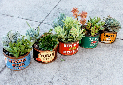 Picture7 - DIY Tin Can Planters
