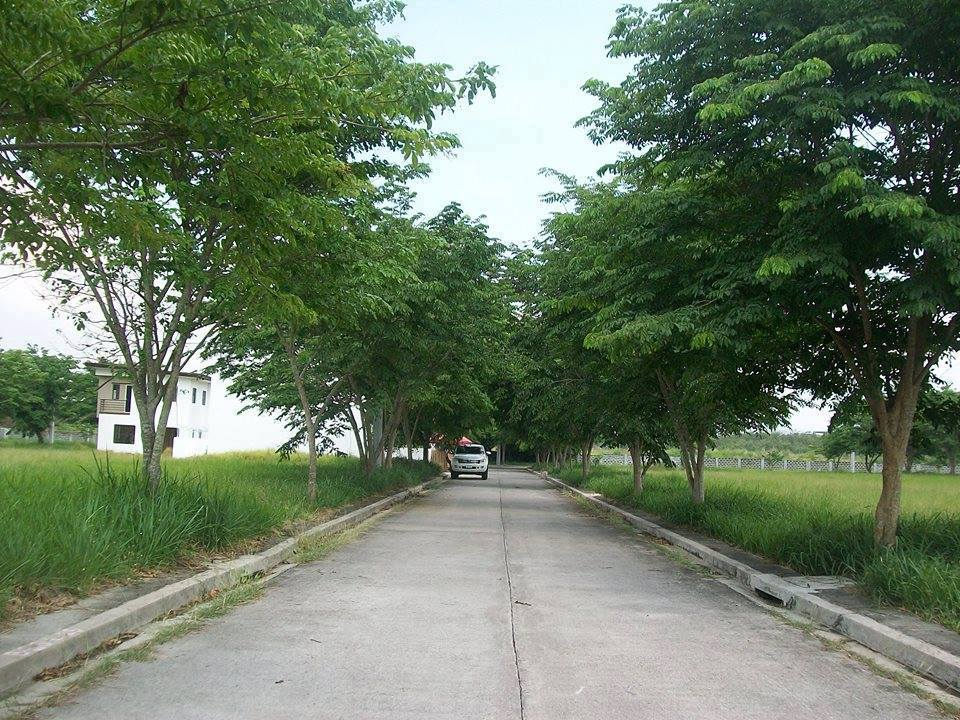 Affordable Property Listing Of The Philippines Palma Real Binan Affordable House And Lot In