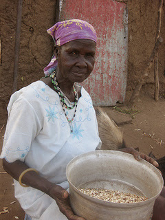 Shelling Niébé beans, a variety of cowpeas in Africa - photo by amythenurse