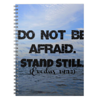 Do not be afraid stand still notebook
