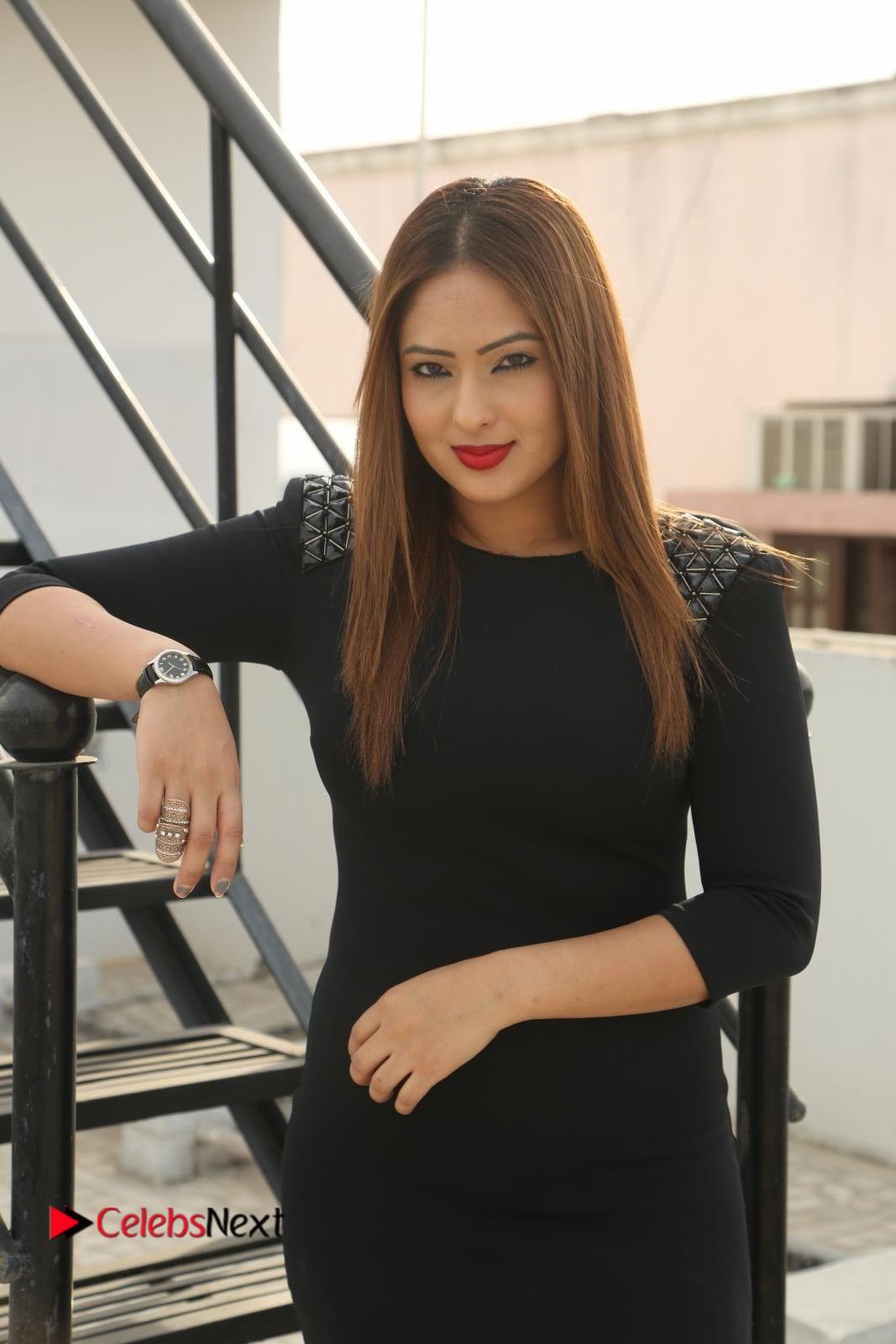 Nikeesha Patel Latest Stills in Stylish Short Dress at Araku Roadlo Movie Interview