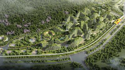 Kota Hutan China | liataja.com