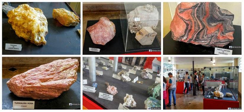 Museu de História Natural da UFMG, Belo Horizonte
