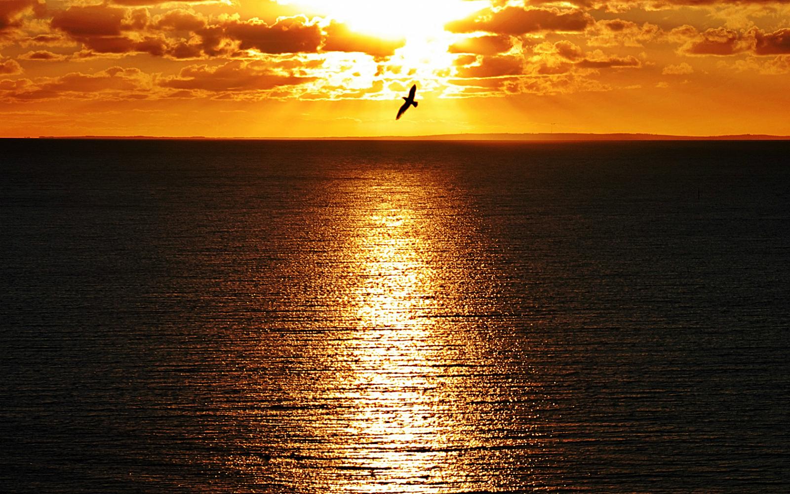 sunset awesome oregon wallpaper - photo #41