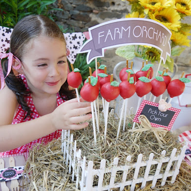 DIY Apple Cake Pops & Barnyard Birthday Centerpiece