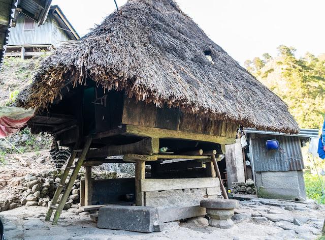 Pula-Région de l'Ifugao-Luçon-Philippines