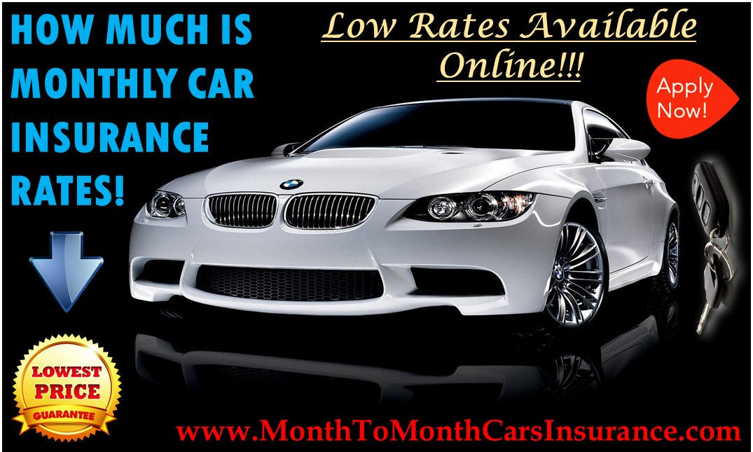 How Much Is Monthly Car Insurance For Youngsters
