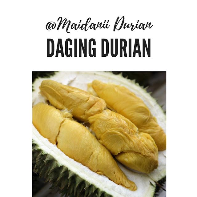 distributor-daging-durian-medan_20