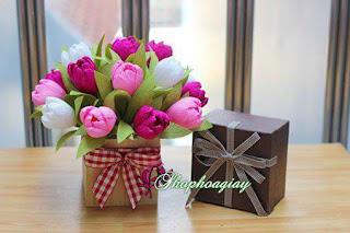 Hoa giấy đẹp tặng lễ