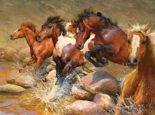 horses-caballos-finos