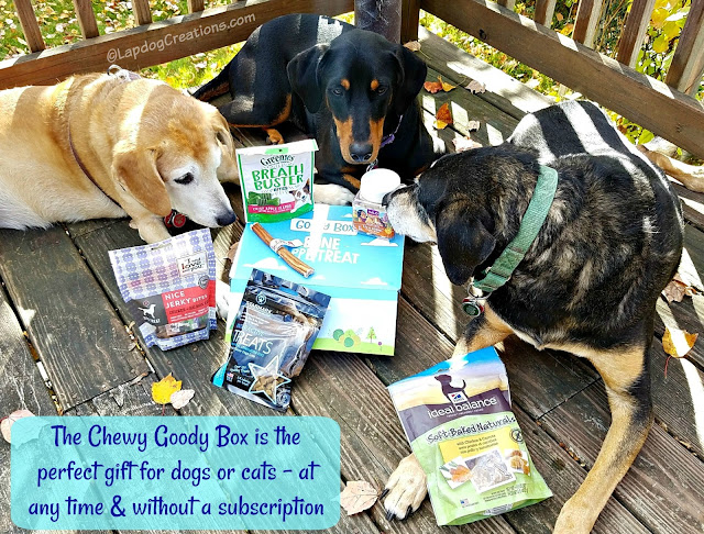 chewy goody box dog treats rescue
