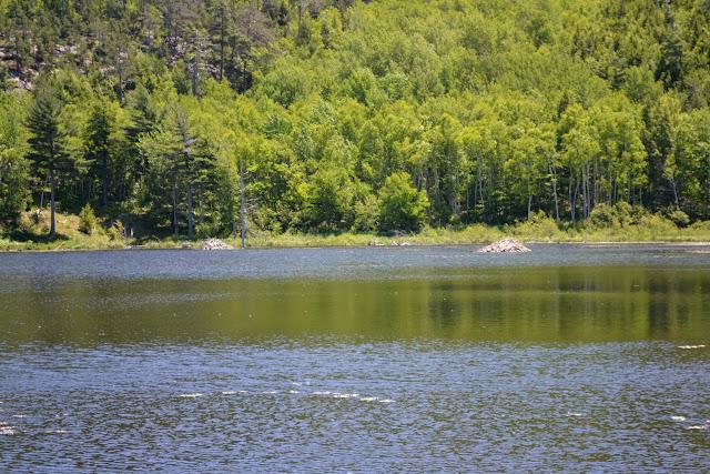 Национальный парк Акадия, Мэн (Acadia National Park, ME)