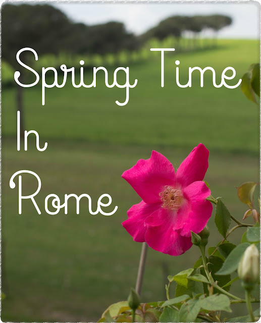 Getting Your Flower Fix in Rome
