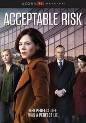 Acceptable Risk Temporada 1 audio español