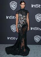 Janina Gavankar Sexy Picture in Black Long Dress