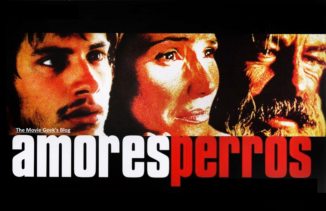 Amores Perros 2000 amores perros [2000]: loyal dogs, disloyal people | tishak movie