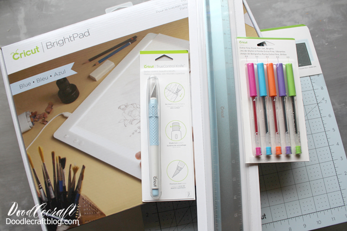 Invest in some Cricut supplies to make extra income from home during the day.