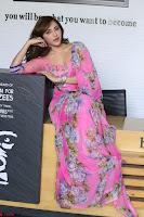 Angela Krislinzki Rogue Movie Fame Telugu Actress in Saree Backless Choli 019.JPG