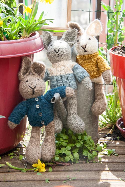 lapins little cotton rabbits avec pull
