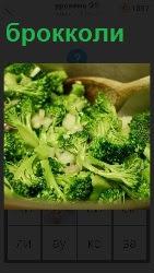Капуста брокколи готовится в сковородке на плите и помешивается лопаточкой специальной
