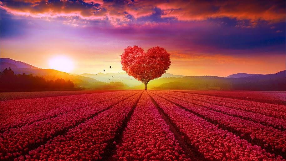 Beautiful, Heart, Tree, Landscape, Scenery, 4K, #6.447