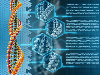 image of the breakdown of DNA into genetic code.