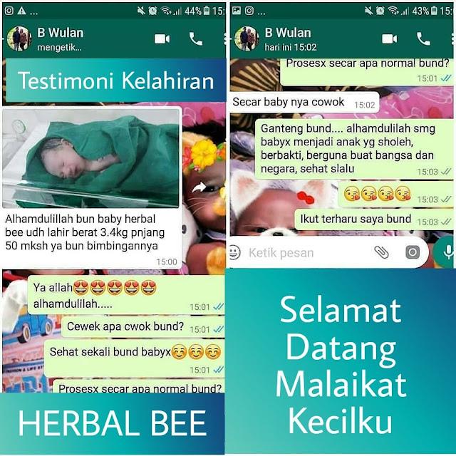 Herbal Bee Untuk PCOS, Herbal Bee Untuk Tuba Falopi tersumat, Herbal Bee Untuk Kista, Herbal Bee Untuk Haid Tidak teratur