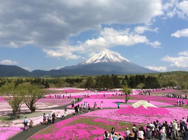 Turistando pelo Japão