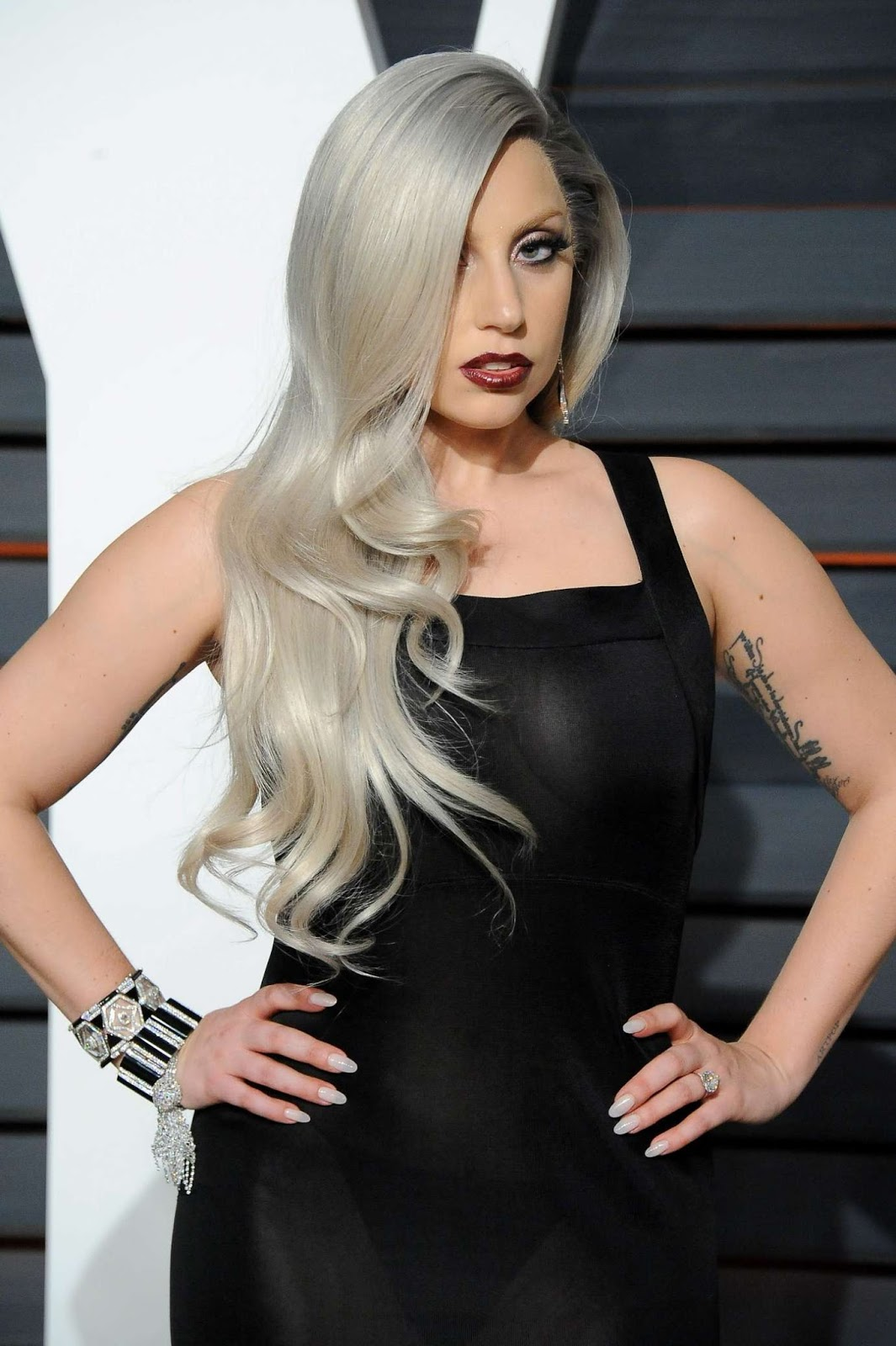 Lady Gaga nude (16 foto), video Topless, Twitter, swimsuit 2015