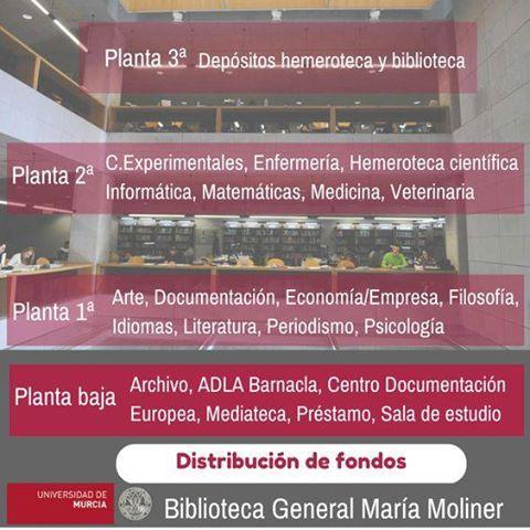 No te pierdas en la Biblioteca General María Moliner.