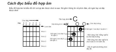 Các hợp âm và các nguyên tắc cơ bản trong Guitar