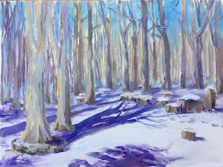 BNAA,Merit Award, Winter Shadows,winter painting