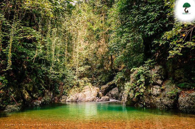 jardin falls catanduanes