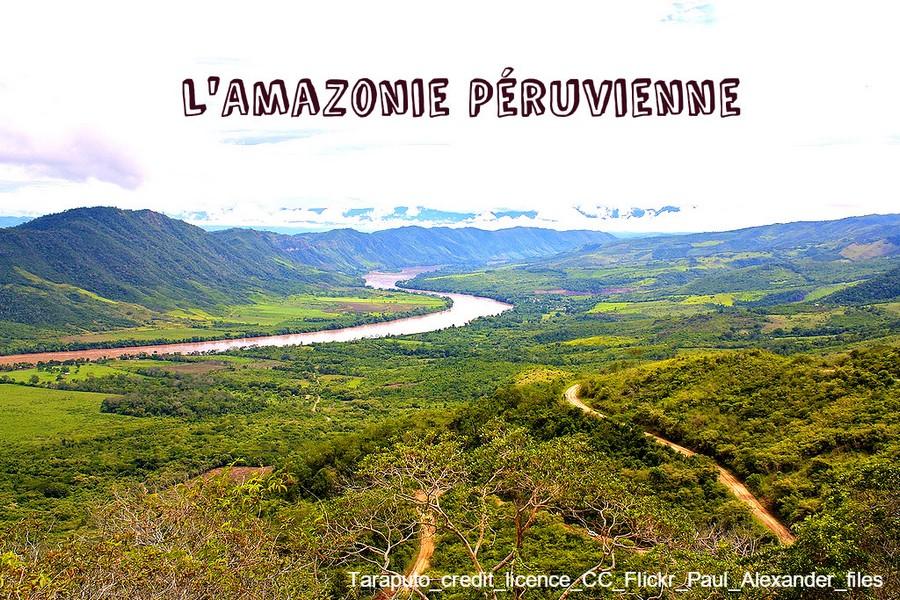 AMAZONIEPERUVIENNE
