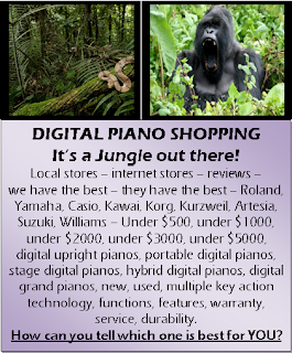 Digital Piano Shopping