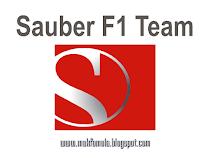 http://makformula1.blogspot.mk/2013/01/sauber-drivers.html