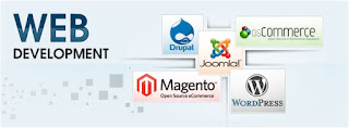 Best Website Development in India