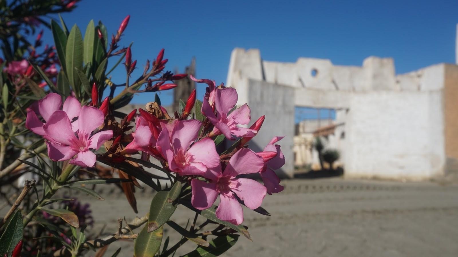 Texas Hollywood, Fort Bravo, Oasys, Hiszpania, południowa Hiszpania